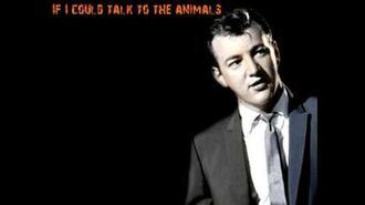 Bobby Darin - If I Could Talk To The Animals