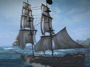 Jackdaw 1715