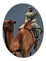 Camel Warriors NTW Icon