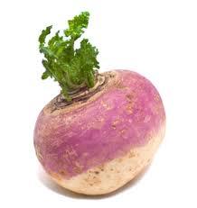 File:Turnip.jpg