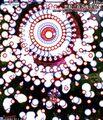 Thumbnail for version as of 02:45, September 13, 2008