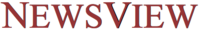 NewsView Logo