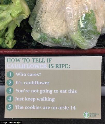 File:5 ways to tell if this is ripe.jpg