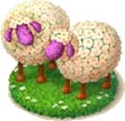Sheep Flowerbed