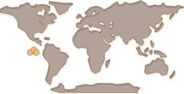 Giant Tortoise Map