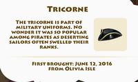Tricorne