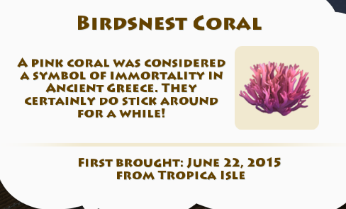 File:Birdsnest Coral.png