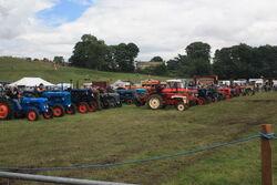 Masham Steam Rally Tractor line up 09 - IMG 0339