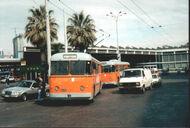 Mk Neapel Trolleybus