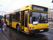 Constanta MAZ yellow bus