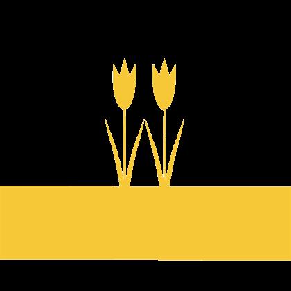 File:FlagBurkeland.png