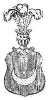 Lachnicki