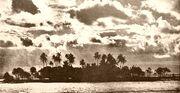 Wyspa koralowa
