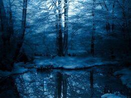 Snowy-Forest-Wallpaper 620