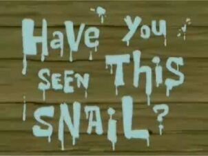 Have You Seen This Snail