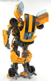 R leader-bumblebee-088