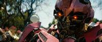 Dotm-laserbeak-film-pink