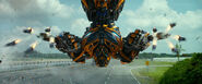 Bumblebee Age of Extinction