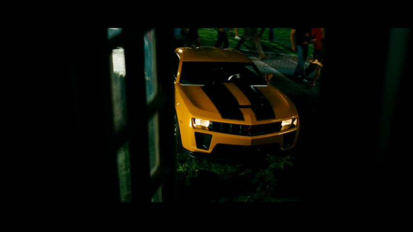 Camero on the lawn