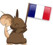Flag waving FR