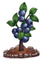 Blueberries (fully grown) - Farming 2016.png