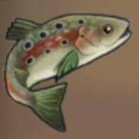 File:Trout.JPG