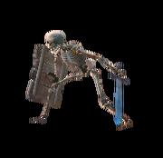 Shield Skeleton