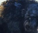 The Troll Hunter Wiki