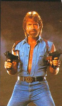 File:Chuck norris facts.jpg