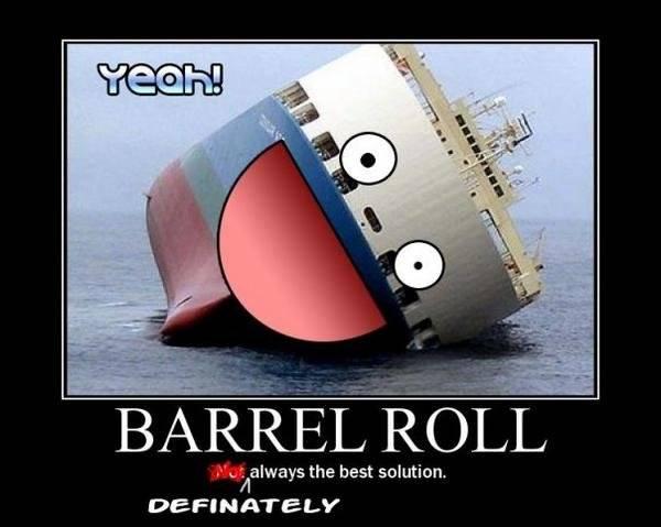 File:Hey-ship-do-a-barrel-roll-1rpo.jpg