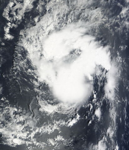 File:Pre-Tropical Depression Eight 2009-09-25 1250Z.jpg