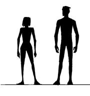 Basic body shape silhouette
