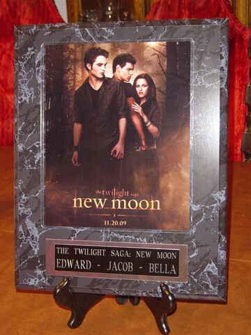 File:12x15 Movies - Twilight New Moon 1.JPG