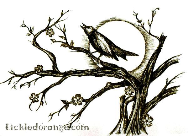 File:Nightingale.jpg