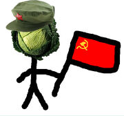 Commie cabbages