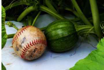 File:Baby Pumkins first basce ball.png