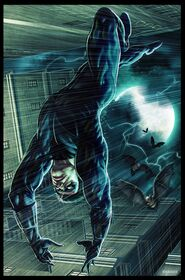 NightWing The fall by Rennees
