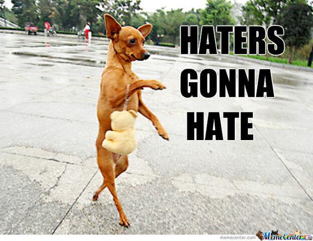 File:Haters.jpg