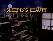 SleepingBeautyUStitlecard