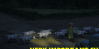 Very Important Sheep