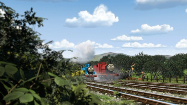 File:ThomasAndThePigs31.png