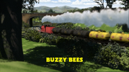 BuzzyBeestitlecard