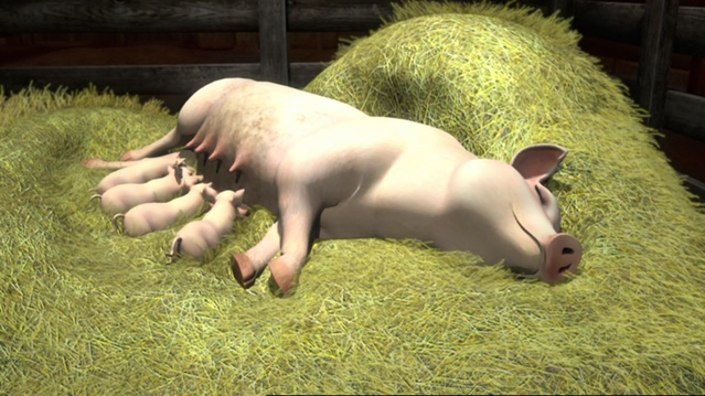 File:ThomasAndThePigs79.png