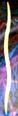 Thumbnail for version as of 23:50, November 3, 2015