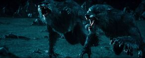 Werewolf in Rise of the Lycans