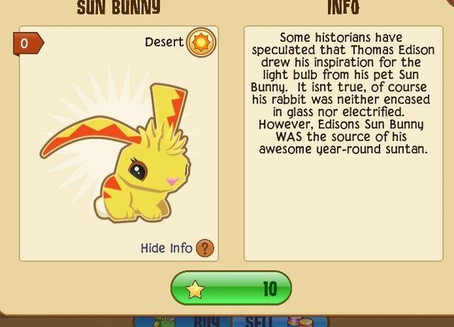 File:Sun Bunny.jpg
