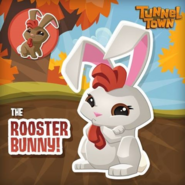 Rooster Bunny (Facebook)