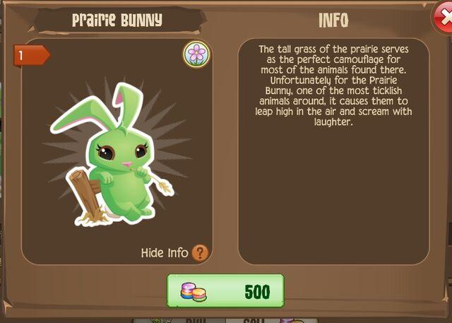 File:Prairie Bunny 1 (Info).jpg