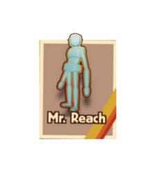 Mr.Reach