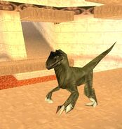 Rage of Wars Raptor 55566
